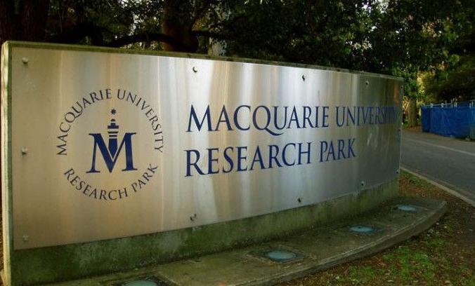 麦考瑞大学