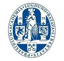 宁波的大学排名_莱顿大学 - 院校介绍,排名,费用,奖学金,地理位置,热门专业 - 院校 ...